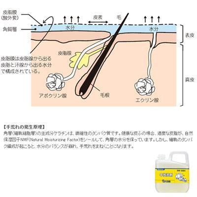 ヤシノミ洗剤#2